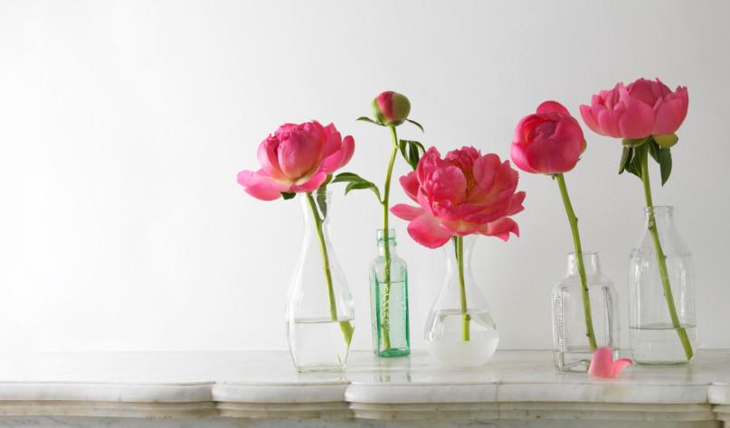 Зачем добавлять сахар в воду с цветами